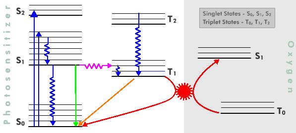 Jablonski Energy Diagram Wire Data Schema