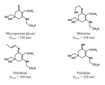 chlorogenic acid