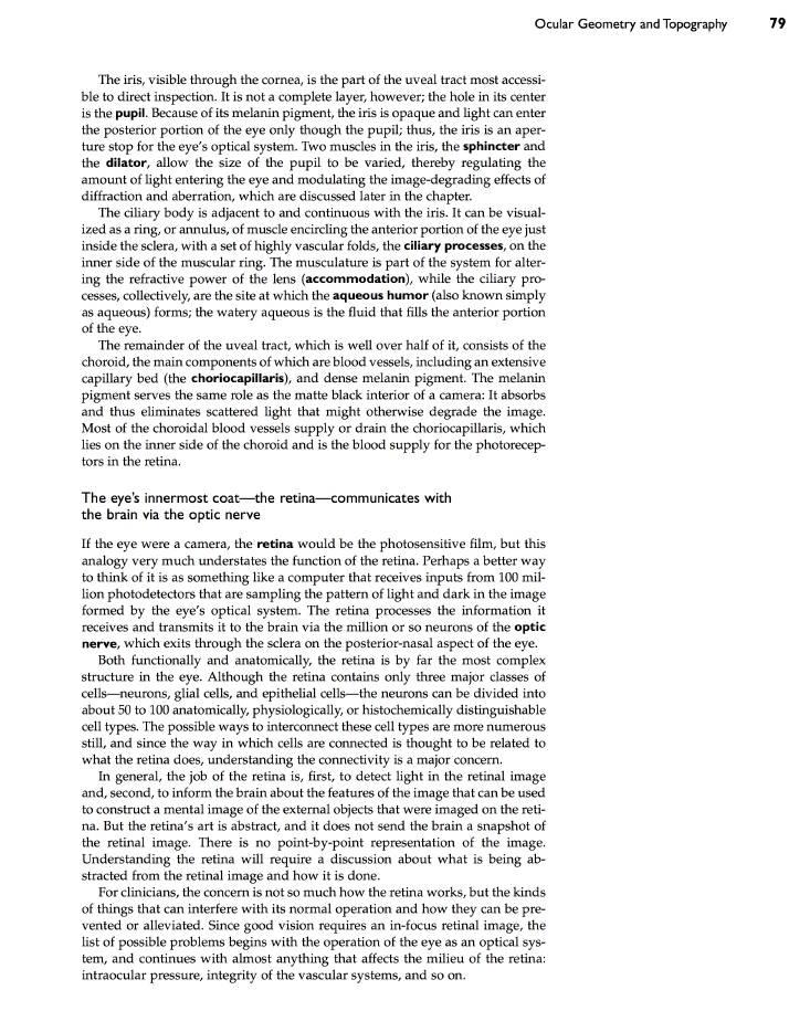Custom admission essay length