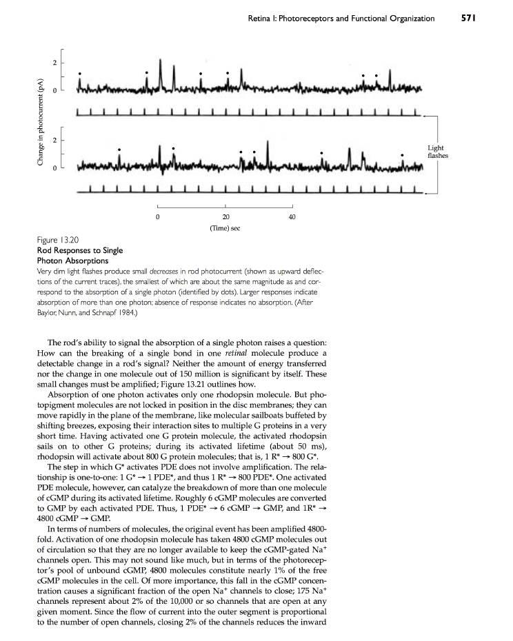 geometria proiettiva problemi risolti e richiami di teoria 2011